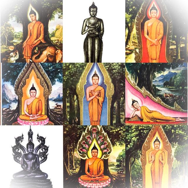 Birthday Buddhas